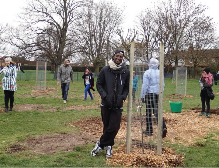 UrbanOrchard-tree-planting