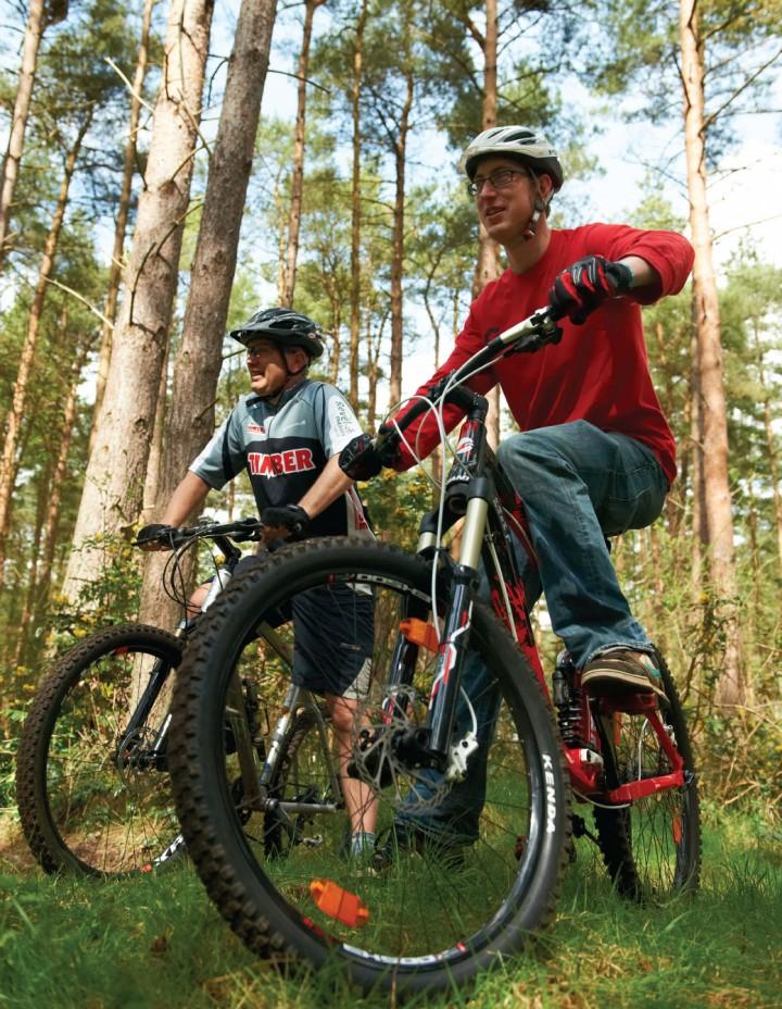 bikeforest