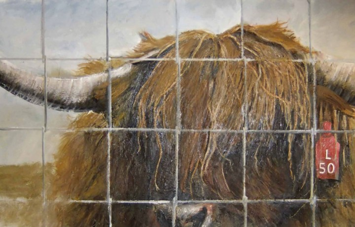 Stir--5---bull