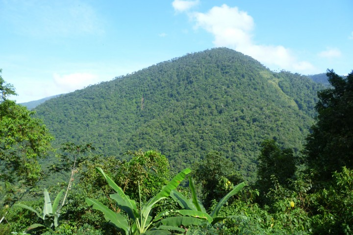 1040Lush-vegetation-and-mountains-surounding-the-Lost-City-in-Colombia