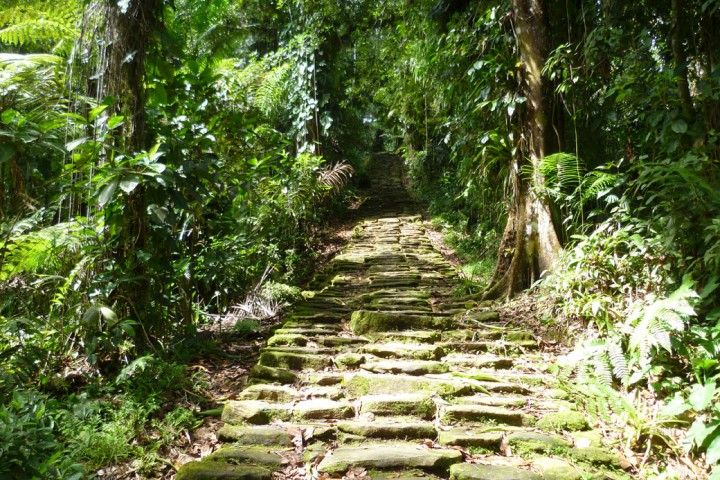 1040You'll-have-to-climb-stone-stairs-to-get-to-the-Lost-City-in-Colombia