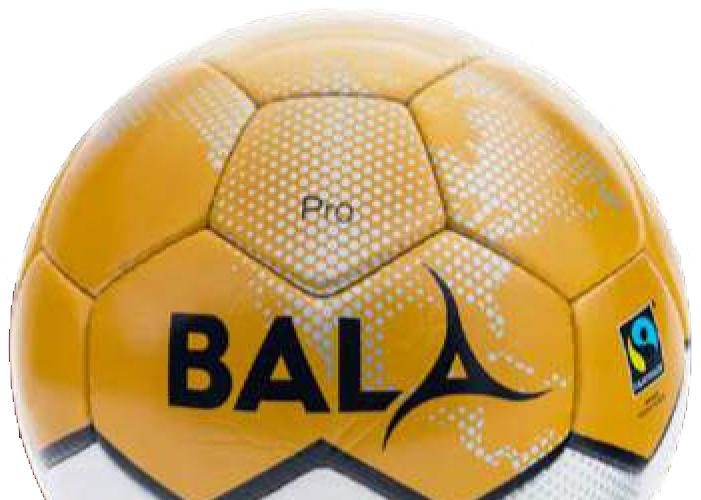 1040BalaBalle-Jan-16-5